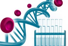 Международный симпозиум по геномике 21-23 ноября 2017г.