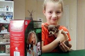 Подарок для щенков мелких и миниатюрных пород собак