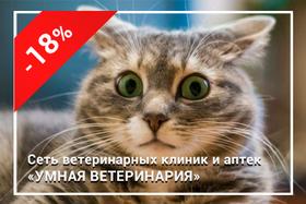 Скидка 18% на стерилизацию кошек и кастрацию котов
