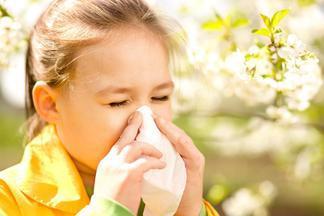 Не стоит увлекаться аллерготестами. Порой аллергена нет вообще