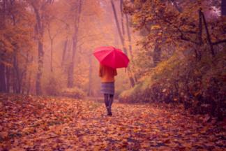 Полчаса в день: 6 преимуществ регулярных прогулок для здоровья и фигуры