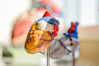 Назван симптом, который наглядно указывает на проблемы с сердцем