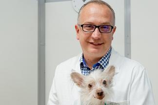 Как уберечь питомцаотклещей, асебяотпереживаний? Ветеринарный врачоспособахзащиты