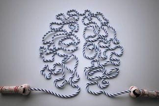 Цепкий ум в юности и в старости: неочевидные хобби, полезные для здоровья мозга