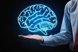 Правда или миф. Мозг уменьшается из-за хронического стресса?