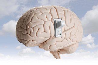Чем подпитать мозг? Пятерка продуктов, которая ему понравится