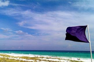 Правила безопасности. Что означают флаги, размещенные на пляжах?