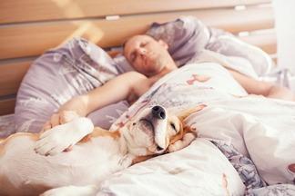 Высыпайтесь на здоровье! 7 интересных фактов про сон