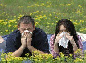 День борьбы против астмы и аллергии