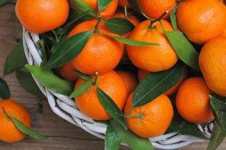 Польза мандаринов: низкое количество калорий, высокое — витаминов