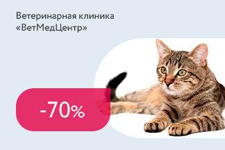 Скидка 70% для волонтеров на стерилизацию и кастрацию котов