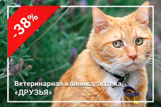 Скидки до 38% на кастрацию котов и стерилизацию кошек