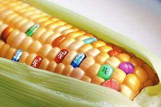 ГМО не вреднее химических добавок. Специалист о реальной и надуманной опасности