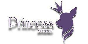 Студия красоты для животных «Princess (Принцесс)»