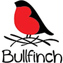 Медицинский центр «Bullfinch (Буллфинч)»