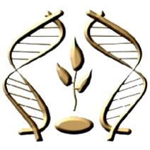 Государственное научное учреждение «Институт генетики и цитологии Национальной академии наук Беларуси»
