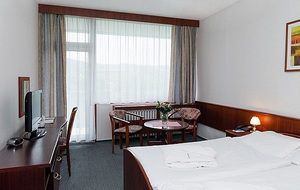 Отдых и оздоровление за рубежом Ibookmed Курорт Пьештяны Отель Spa Hotel Grand Splendid 3* - фото 2